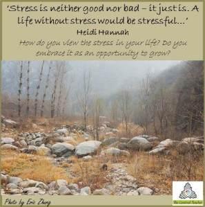 stress is niether good nor bad